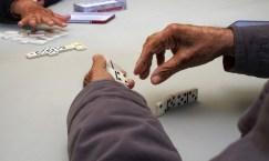 the burg backgammon