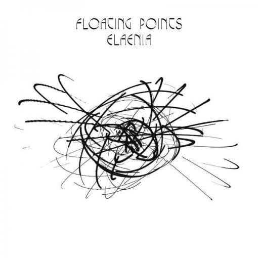 floatingpointselaenia.jpg