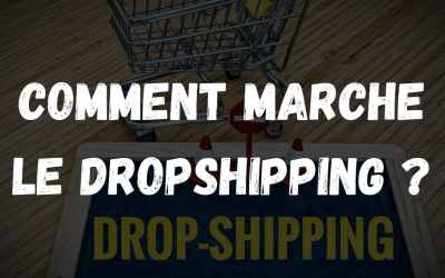Comment marche le dropshipping ?