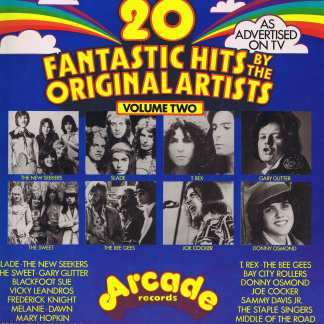 20 Fantastic Hits By The Original Artists Volume Two - 2891 002 - LP Vinyl Record