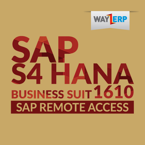 SAP S4HANA 1610 Business Suit Remote Server Access - SAP Plug and Play Hard  Drives | SAP Remote Access | SAP Server Access