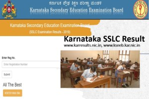 Karnataka SSLC Result 2019 Announced by KSEEB at karresults.nic.in