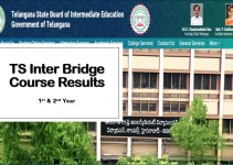 TS Inter Bridge Course Results