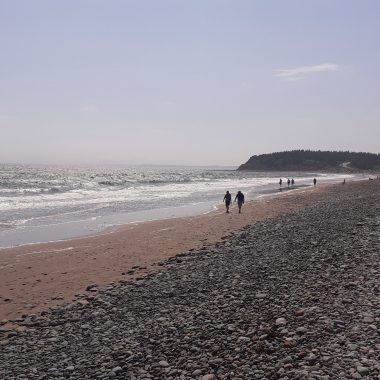 Lawerencetown Beach