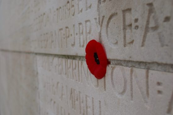 Poppy on wall at Vimy