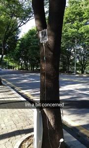 snapchat photo I took on my misadventure