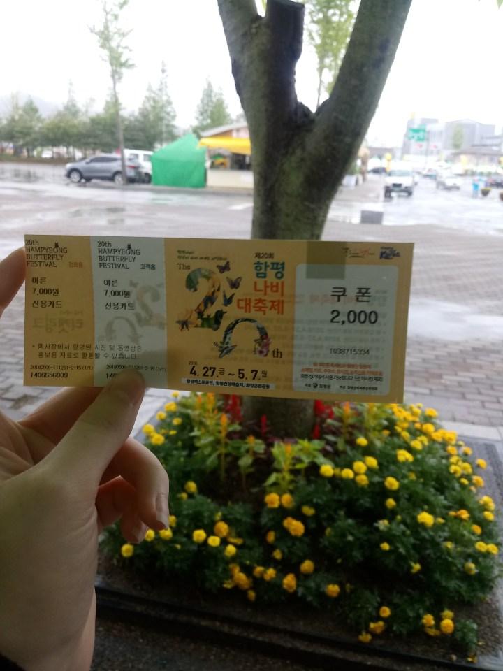 Hampyeong Butterfly Festival 함평 나비대축제