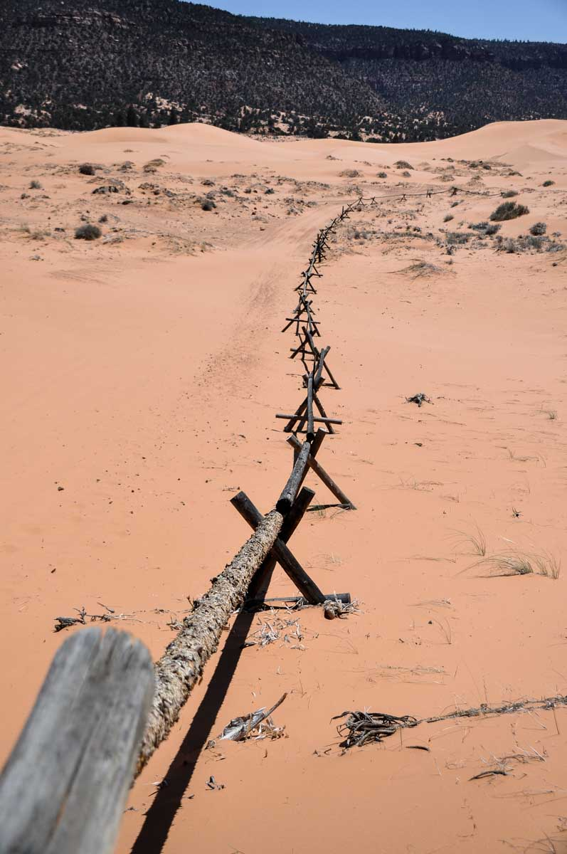 Fending in Coral Pink Sand Dune state park Utah