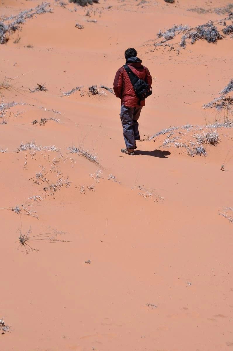 Coral Pink Sand Dunes state park in Utah