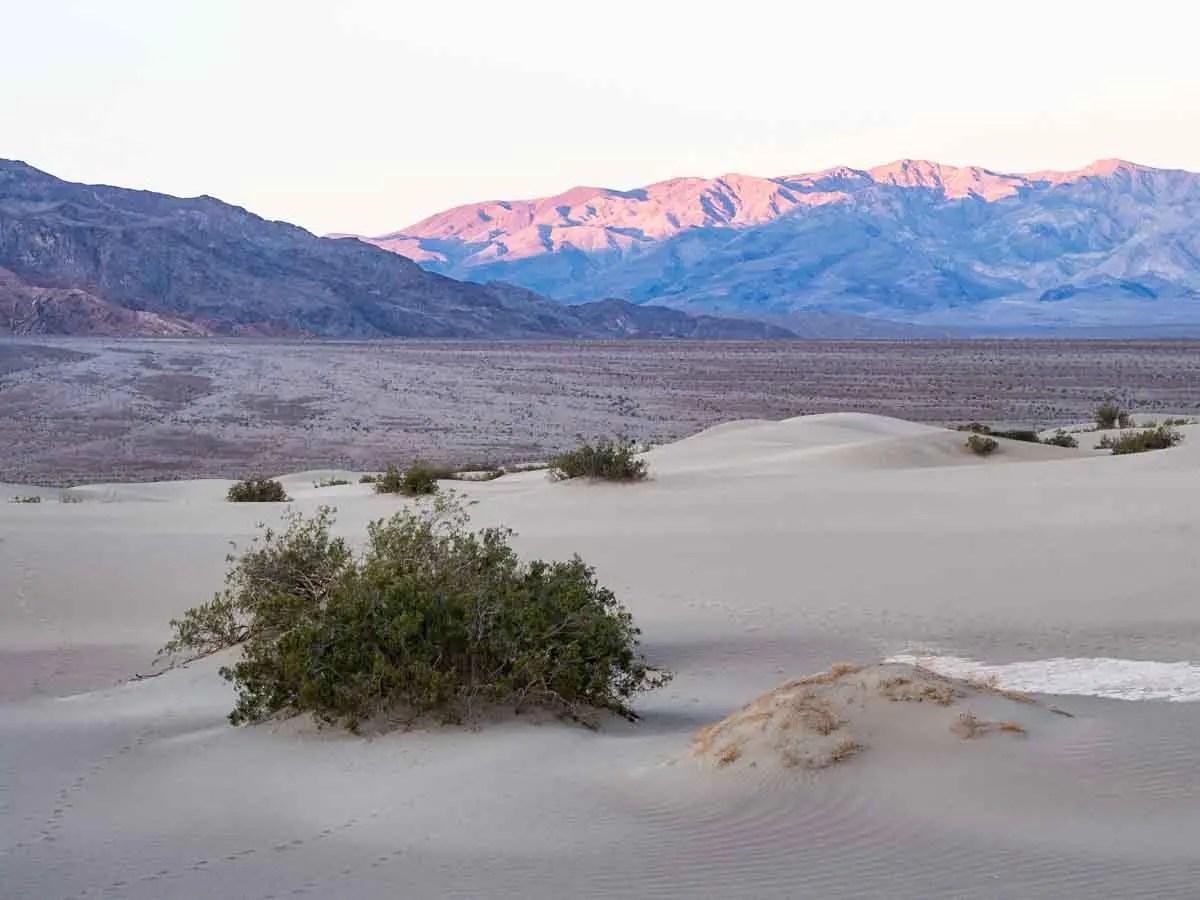 Mesquite Sand Dunes Death Valley Landscape