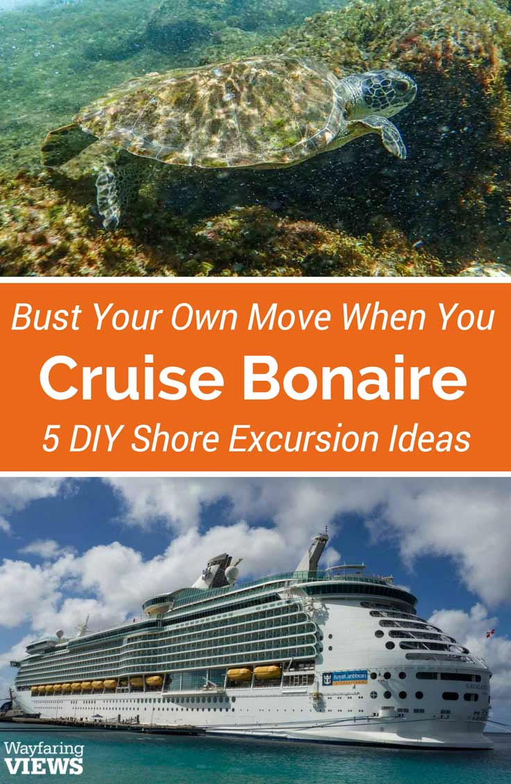 Break out at the Bonaire cruise port and create your own DIY shore excursion. The island is easy to explore on foot, with a bike or in a car.