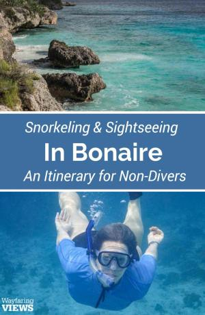 These top things to do in Bonaire are perfect for non-divers. Go sightseeing and snorkeling in Bonaire with this alternative itinerary.