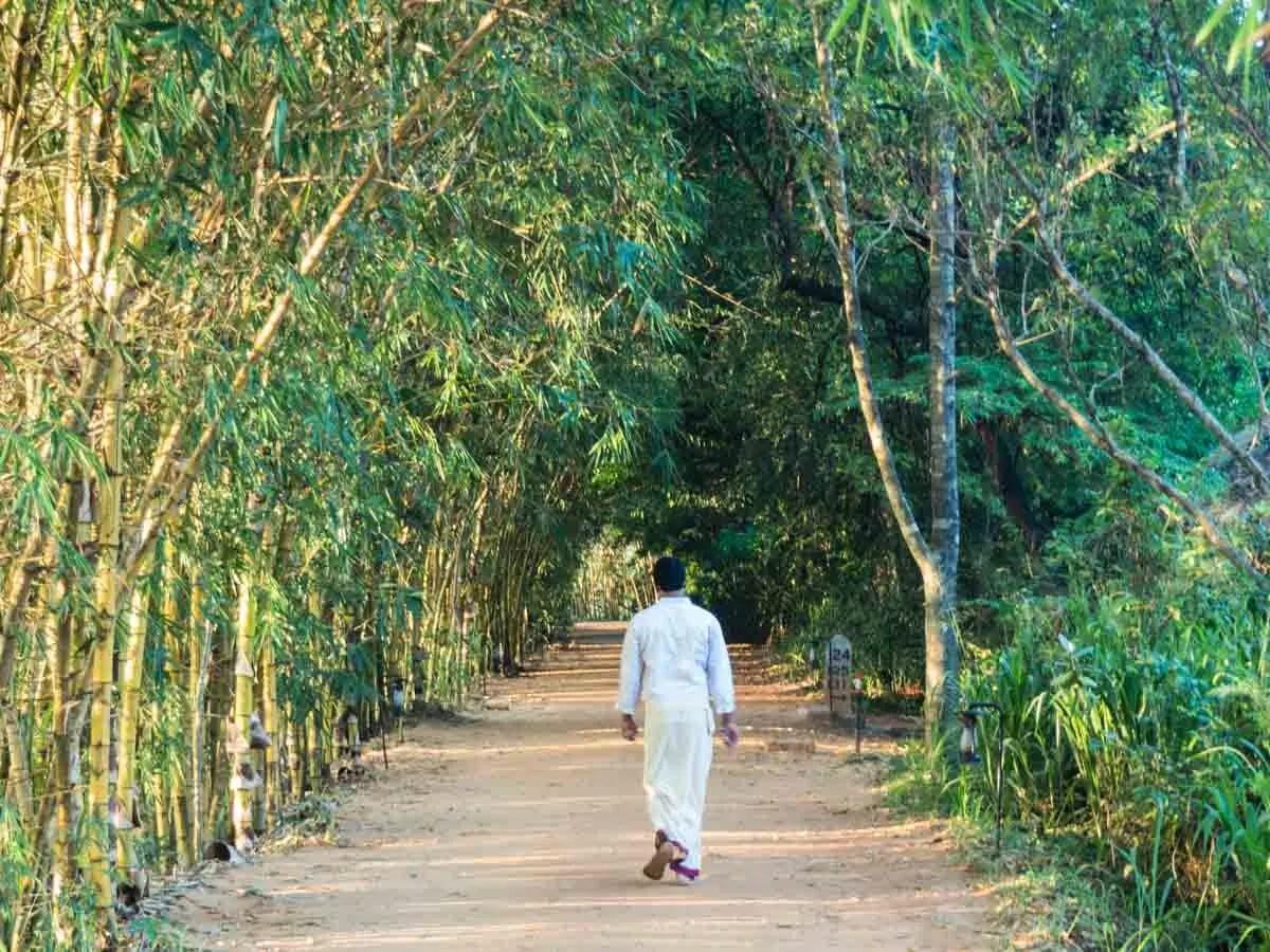 Vil Uyana Hotel Sri Lanka Pathway