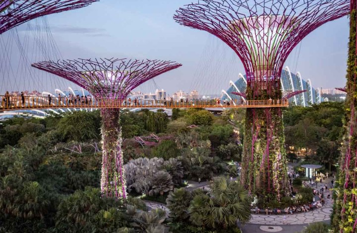 A 3-Day Singapore Itinerary for Art and Nature Lovers