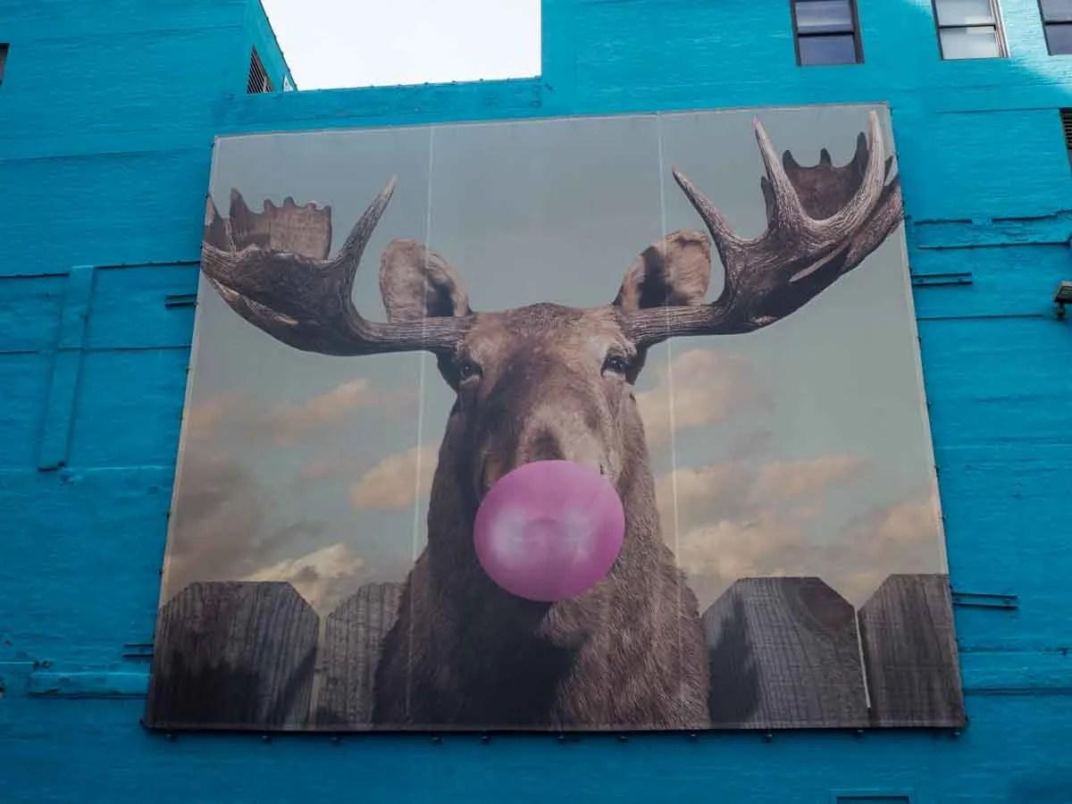 Moose mural on Wabash Corridor