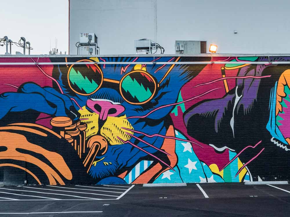 Bicicledta Sem Freio Mural Downtown Las Vegas. For Life is Beautiful Festival. Cat playing music