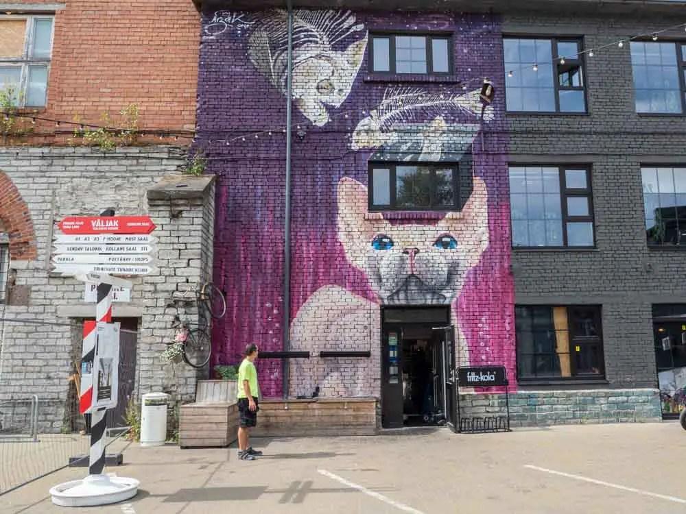 Tallinn street art purple cat with fish