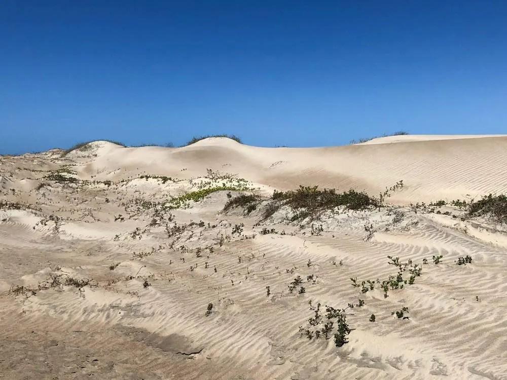 Magdalena bay Mexico sand dunes