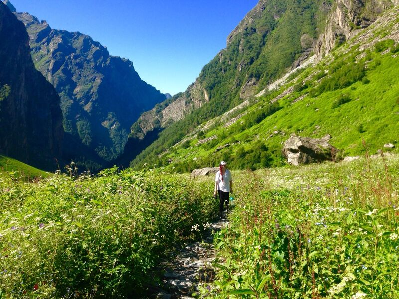 A hike in the Himalayas: A Journal 2/2