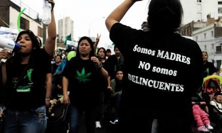 Cannabis medicinal: Urge incluir a las asociaciones de madres en la ley