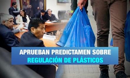 Aprueban dictamen que regula el uso y fabricación de plásticos