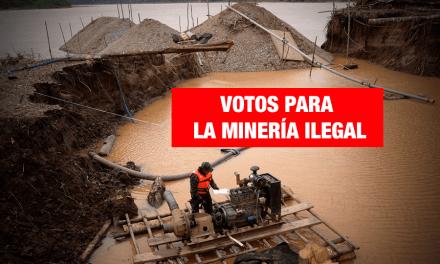 Siete candidatos a Madre de Dios están relacionados con la minería ilegal de oro