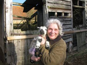 Trustee: Katherine Wolstenholme