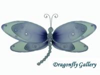 Dragonfly Gallery Logo
