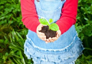 Kids Gardening Program @ Wayland Library | Wayland | Massachusetts | United States