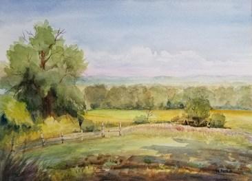 Mainstone Farm View by Nancy Boyle