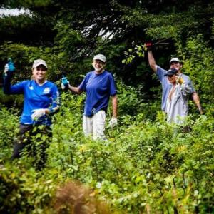 National Volunteer Week: Trail Work Party in Wayland @ Greenways Conservation Area, Wayland