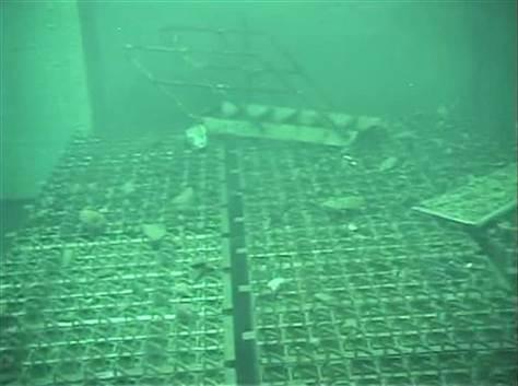 radioactive water,Fukuchima