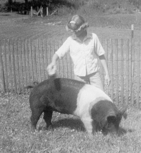 That would be me exhibiting one of my 4-H projects back in the 60's.