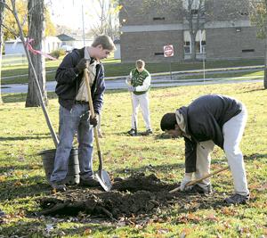 LIONS CLUB PLANT TREES TO ENHANCE WAYNEDALE PARK