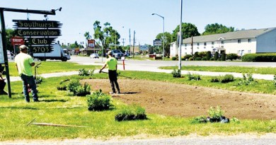 SWCC SELECTED FOR CITY GARDEN INITIATIVE