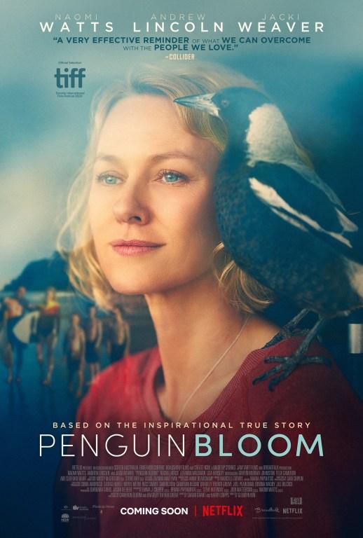 真人真鳥改編《希望鳥/企鵝奇緣》電影介紹,一隻現實中IG有17.4萬粉絲的鳥
