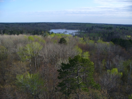 South from Aiton Heights Fire Tower