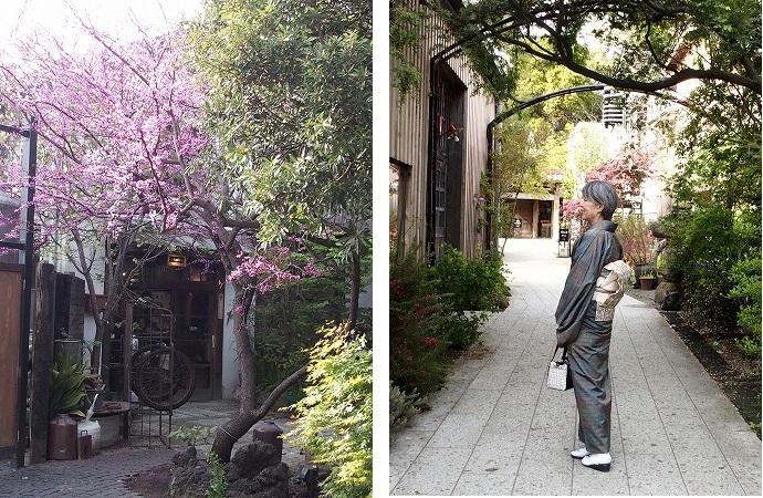 季節を少し戻して4月下旬の茅ヶ崎、絵になるスポット湘南の蔵元熊澤酒造ご紹介