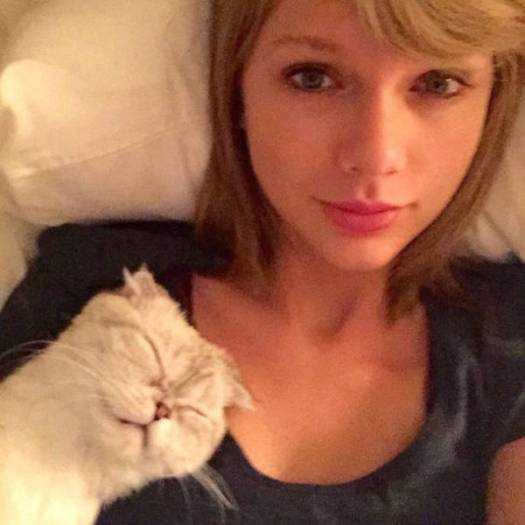 taylor_swift_doppelganger_06