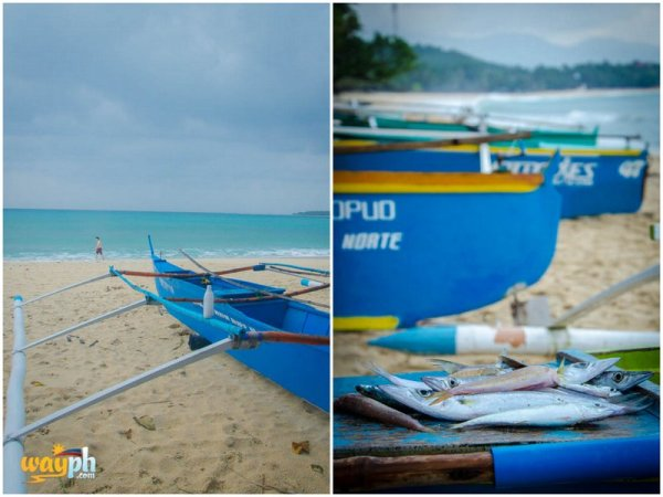 saud beach boat