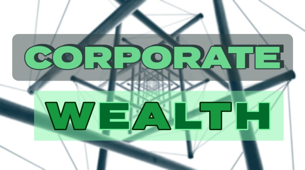 ANALYSIS OF BUSINESS WEALTH