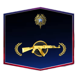 MG 2020 Medal Account