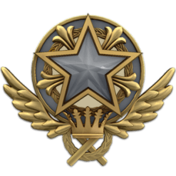2021 Service Medal | Gold Nova 2 | 123 Wins & 319 Hours