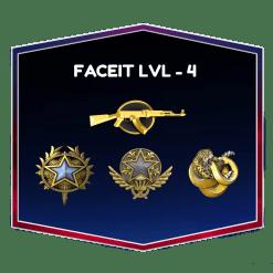 Faceit Level 4 CSGO Account With Broken Fang Coin