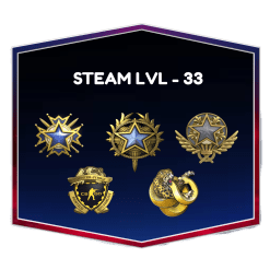 3 Medals CSGO Account With Steam Level 33