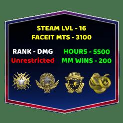 High Tier CSGO Account With Faceit
