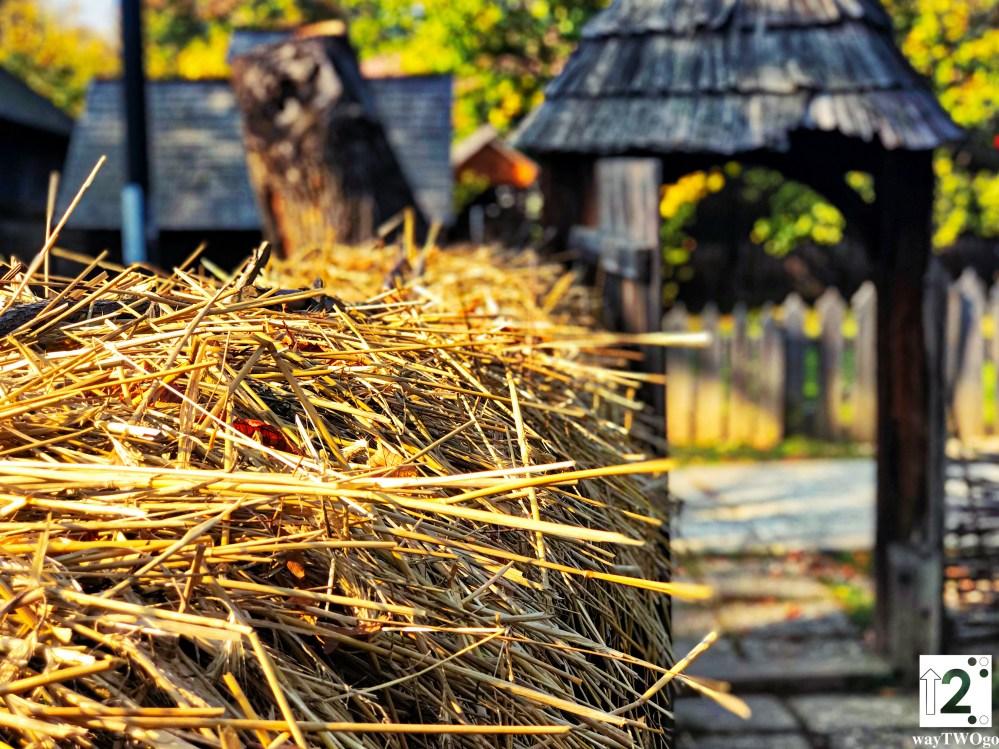 Village Museum Bucharest 4K