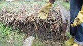 Building Soil at the Wayward Learning Garden (Vining Street in Fernwood)