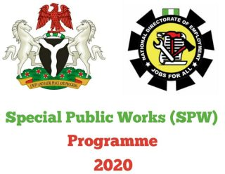 Special Public Works Programme 2020 Recruitment - Application Form ...