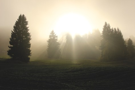 divine-light-1296309_1280